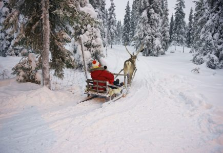 Lapland-Holiday-Experience-2